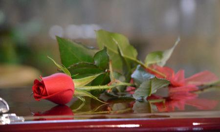 Heritage Floral Single Rose